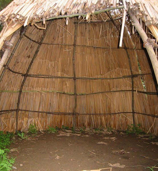 Indian Wilderness Survival Skills: 29 Best Wickiup Images On Pinterest