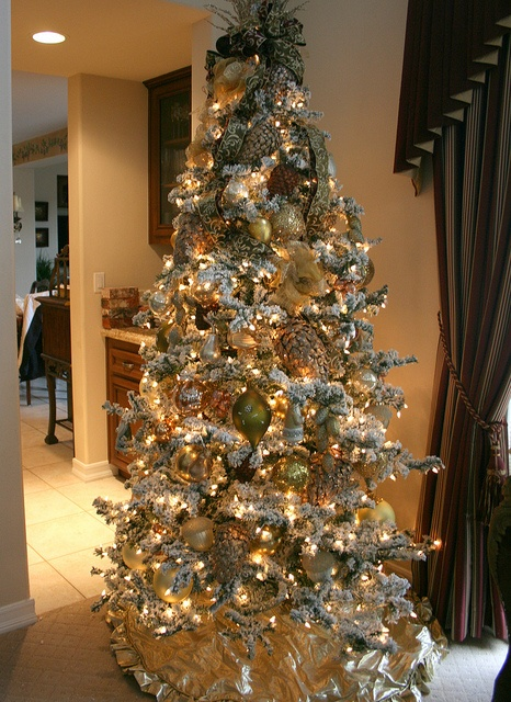 255 best Christmas Specialists - Christmas Decorators and ...