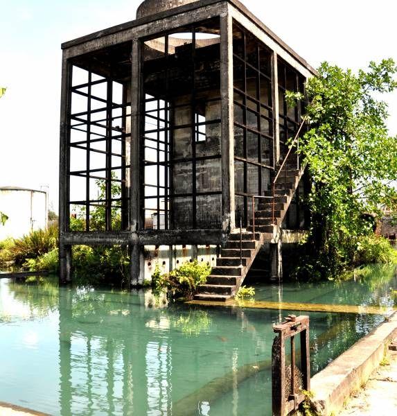 Hampden Estate Rum Distillery è una delle più antiche distillerie di Jamaica, nel cuore del Parish di Trelawny, da poco acquistata e rimessa in funzione dalla famiglia Harris.