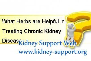 What herbs are helpful in lowering BUN and treating Chronic Kidney Disease ? Actually, it is impossible to lower the high BUN level by one or two single herbs, not mention to treat the disease. If you want to cure the disease permanently, you should take a systematic treatment in time.