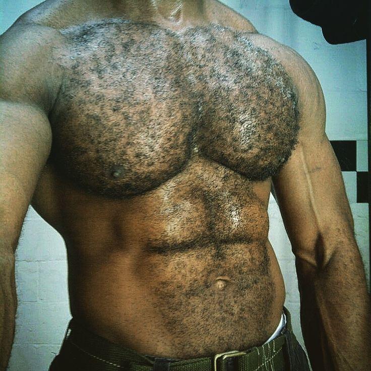 Pin by Randolph Husava on hair  Hairy men Hairy chest Muscular men