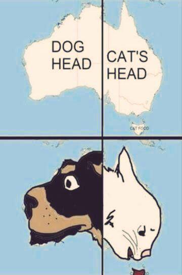Western Australia - Dog Head, Eastern Australia - Cat's Head, Tasmania - Cat Food.