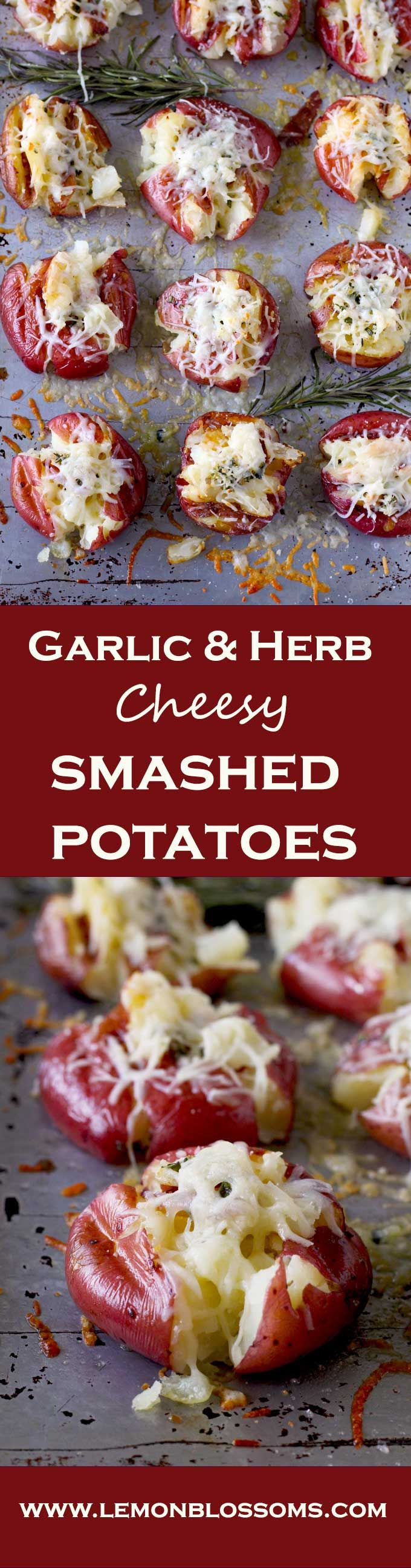 These Garlic & Herb Cheesy Smashed Roasted Potatoes are soft and creamy on the inside and crispy golden on the outside with a garlic and herb butter smashed in. To top it all, cheese! Yummy, gooey, melted cheese!! These are perfect as a side dish or as an appetizer. via @https://www.pinterest.com/lmnblossoms/