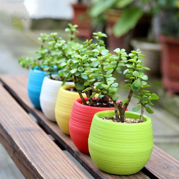 Mini Colorful Round Succulent Flower Pot Garden Office Home Decor
