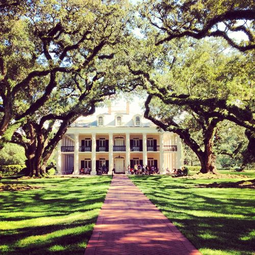 Outfit A Southern Plantation Style Home: 26 Best Images About Tree-Lined Driveways On Pinterest