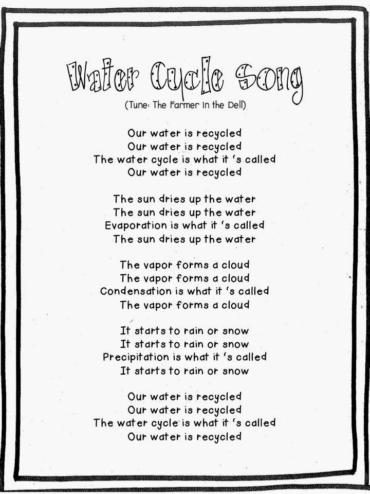 First Grade Fanatics: Water Cycle