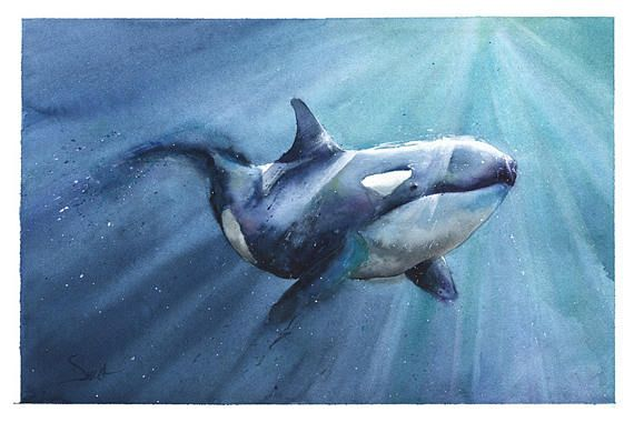 Whale Painting Wooden Poster Hanger Wall