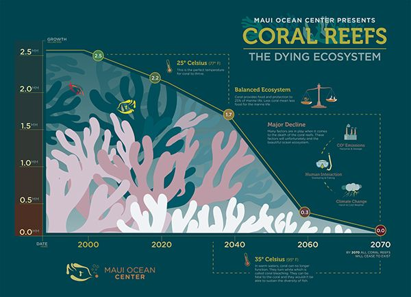 Coral reefs have an inevitable doom, Maui Ocean Center needed an infographic about the importance of reefs and to notify the public that we can prolong this situation.