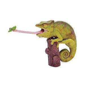 86 best cham leonartiges images on pinterest chameleon chameleons and craft. Black Bedroom Furniture Sets. Home Design Ideas