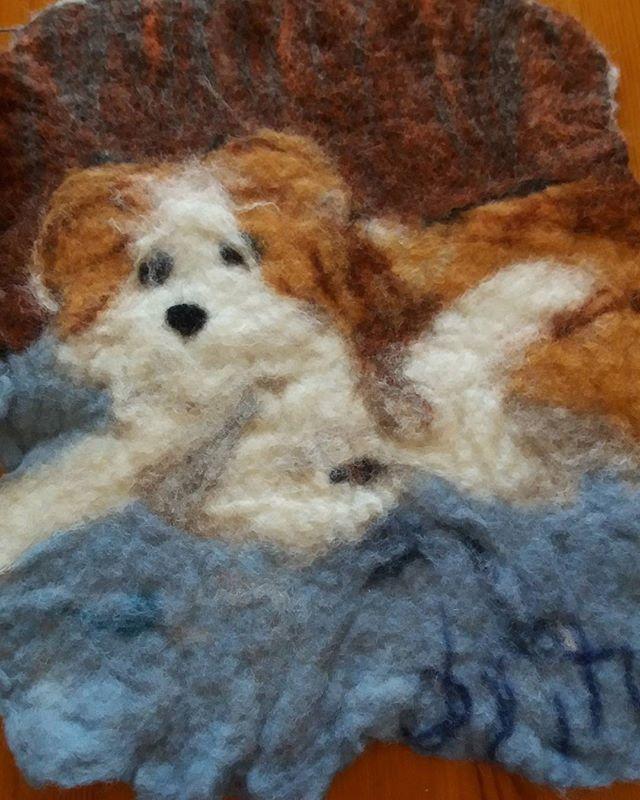 #byitu #Tapio #huopataulu #Pumba #kromfohrländer #kromi #länderi #koira #dog #handmadeinfinland #huovutus #huovutettu #harjoitus #sinivalkoinenkädenjälki