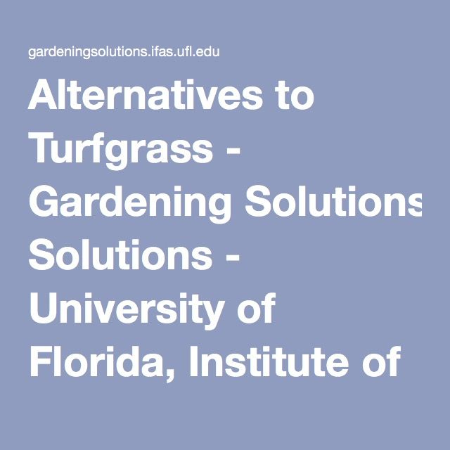 Alternatives to Turfgrass - Gardening Solutions - University of Florida, Institute of Food and Agricultural Sciences