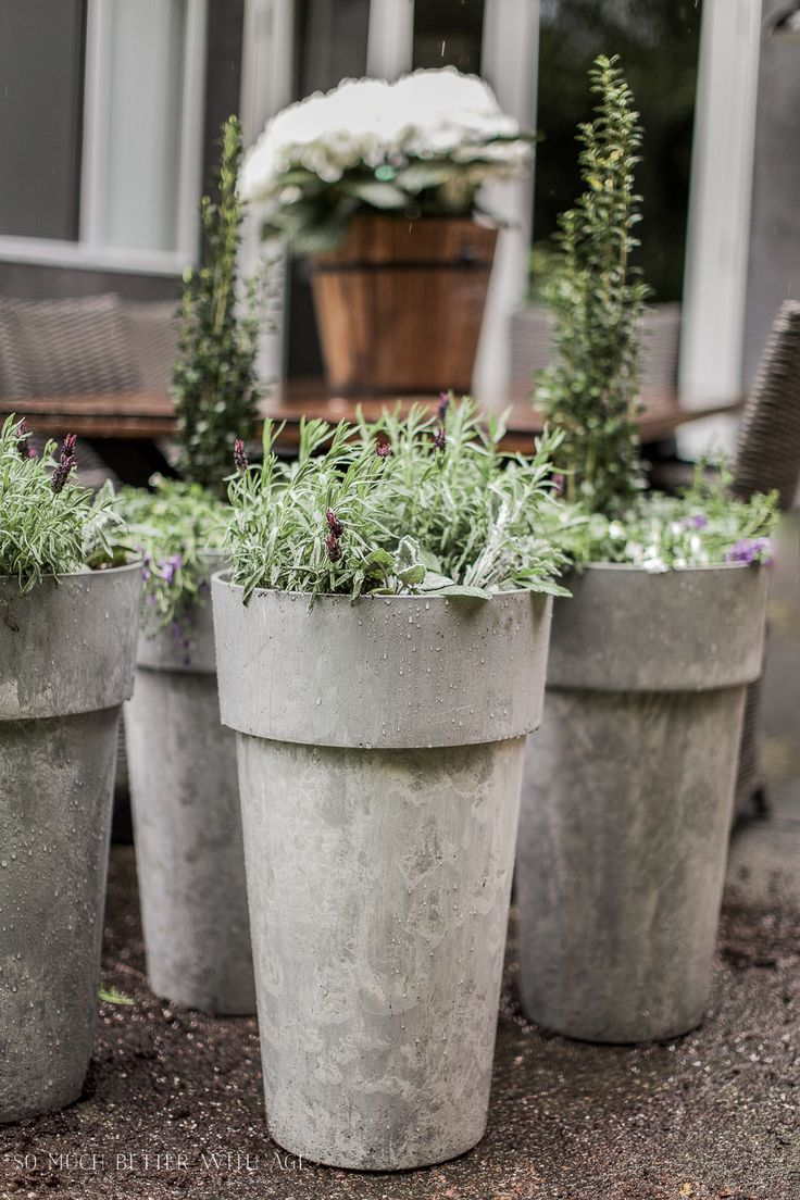 best  large outdoor planters ideas on pinterest  big planters  - the best tip for filling large outdoor planters
