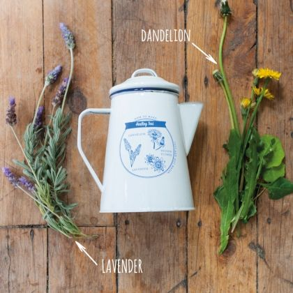 Double sided blue print on white enamel teapot. Identifying natural healing plants that can be found in nature and added to water to make your desired Healing Tea. www.tmod.com.au