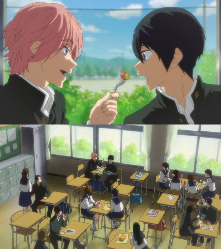 Free! WHY IS THIS PIC SO HILARIOUS THE CLASSMATES ARE LIKE THE WHOLE FANDOM