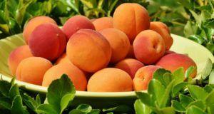 Albicocche: ecco come preparare 3 insalate fresche con frutta e verdura