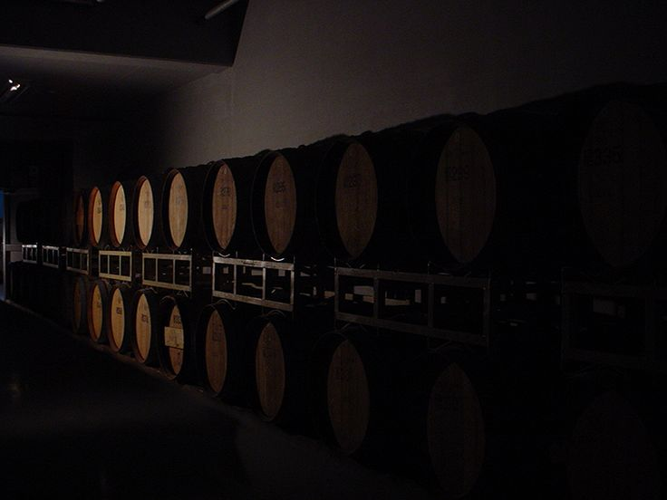 The wine cellar of the Izutsu Wine.