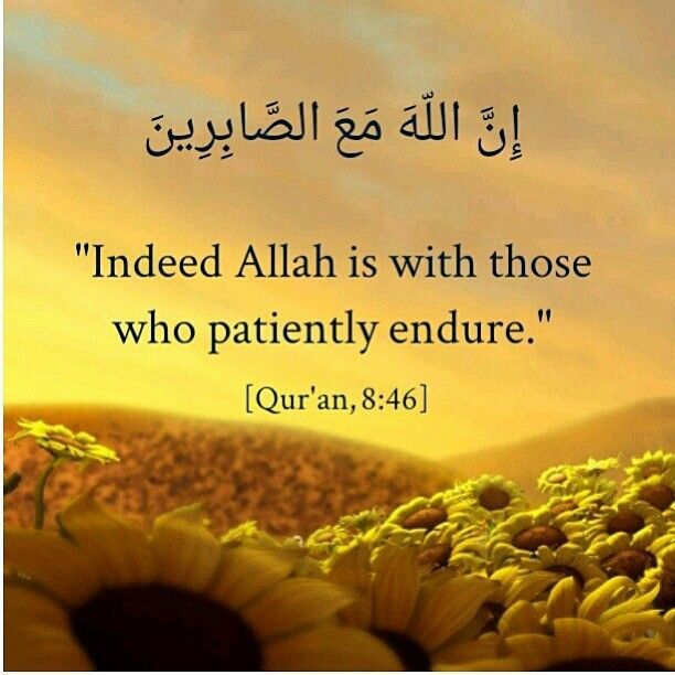 patience quotes in quran,wallpapers,pictures | Quotes ...