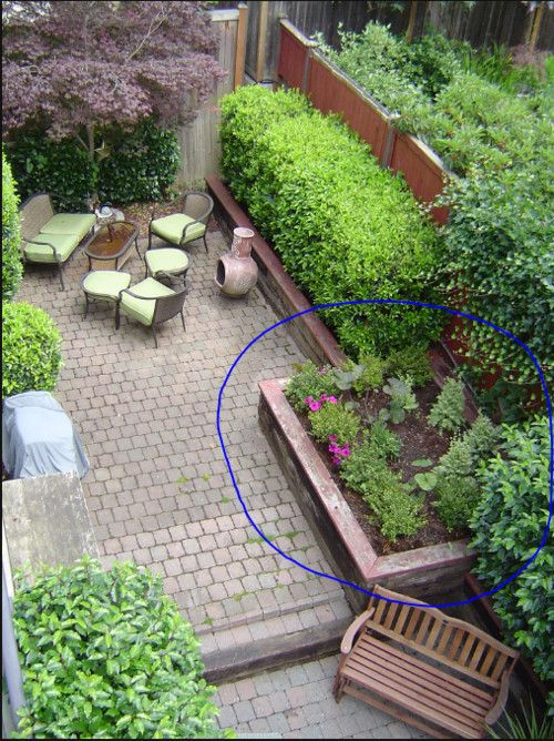 not sure who/why drew the circle around the veggie area, but I like the idea of this space overall