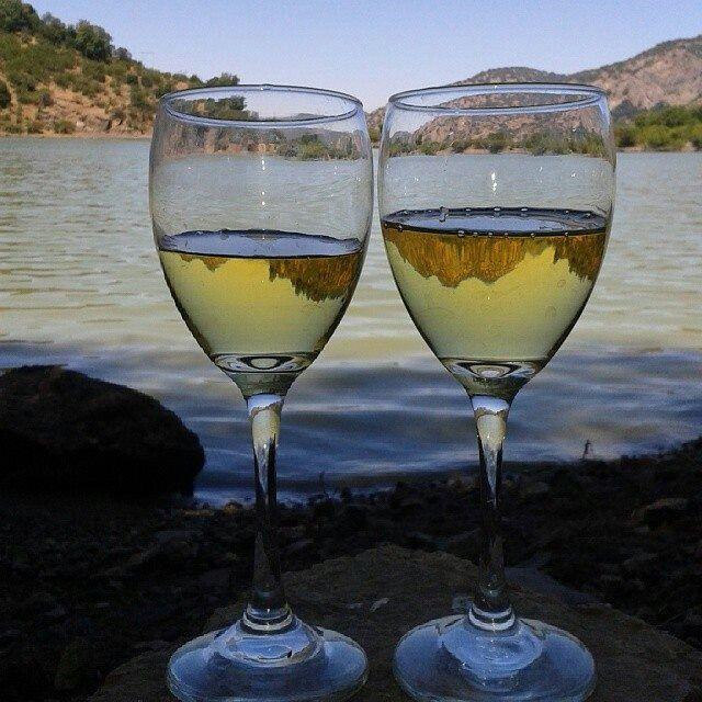 Visto desde una copa de vino blanco.