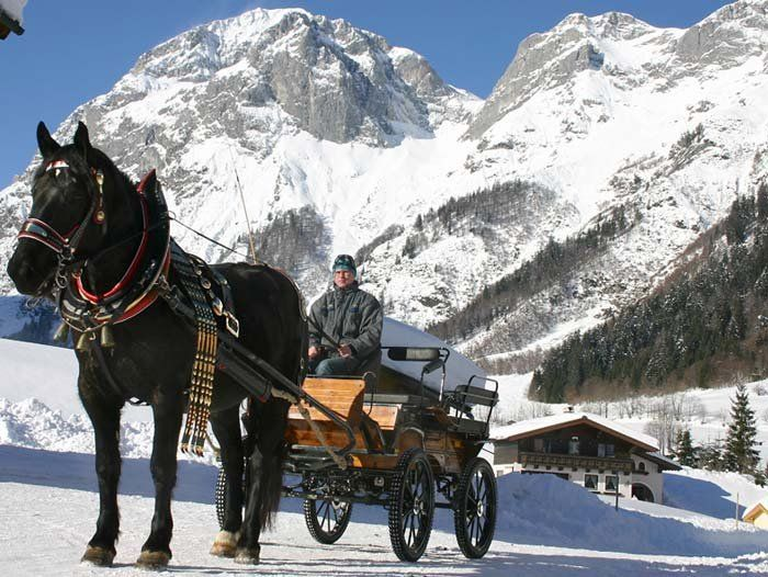 horse drawn sled images | Horse-drawn sleigh rides in winter in Austria - the province of ...