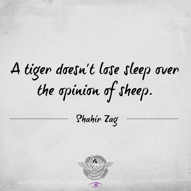 A Tiger Doesnu0027t Lose Sleep Over The Opinion Of Sheep   Motivation Quote