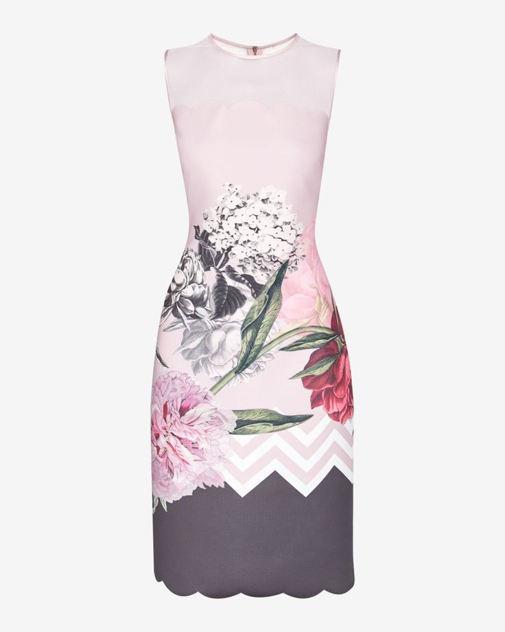 Palace Gardens scallop detail midi dress - Dusky Pink | Dresses | Ted Baker UK