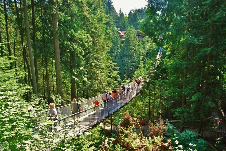 Visiting #Vancouver? Check out these top #attractions.   ➤http://www.vancitybuzz.com/2015/07/best-vancouver-tourist-attractions/?utm_content=buffer9b1f5&utm_medium=social&utm_source=pinterest.com&utm_campaign=buffer  #travel #Canada #wanderlust