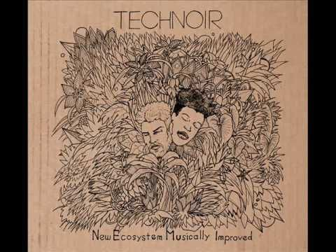Technoir is a psychedelic Soul/Nu Jazz Duo based in Milan, Active since 2014. Follow: https://www.facebook.com/technoirofficial/ Tracklist: 1. Augumented Rea...