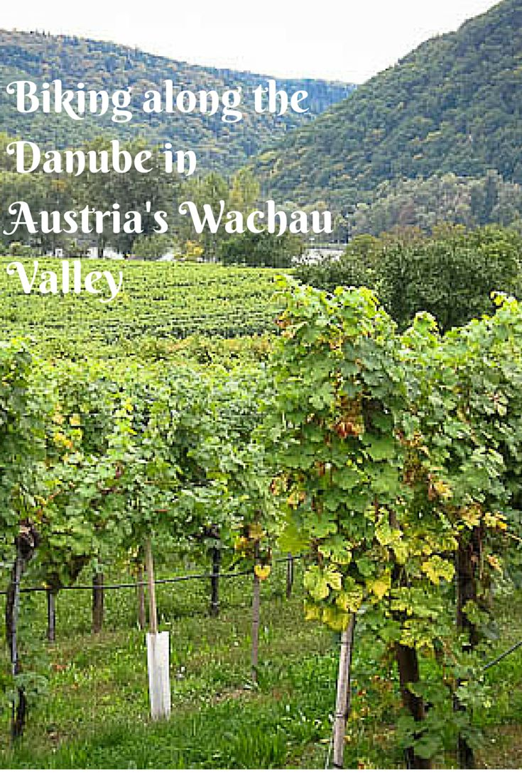 Exploring Austria's beautiful Wachau Valley by bike www.casualtravelist.com