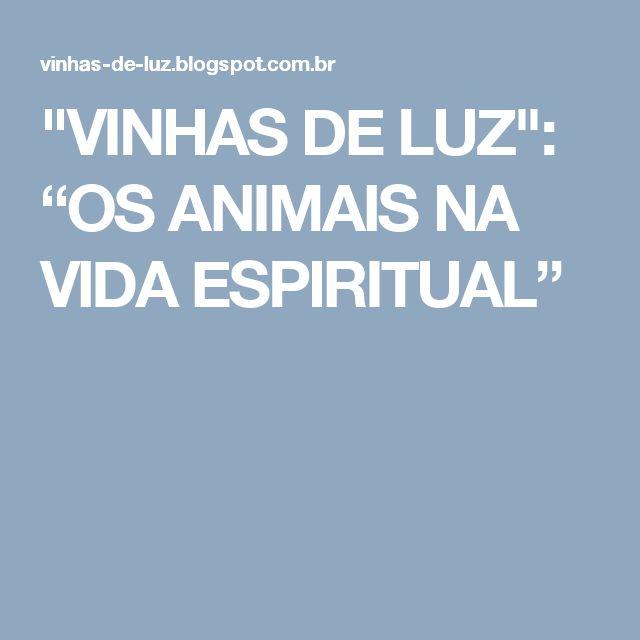 """""""VINHAS DE LUZ"""": """"OS ANIMAIS NA VIDA ESPIRITUAL"""""""