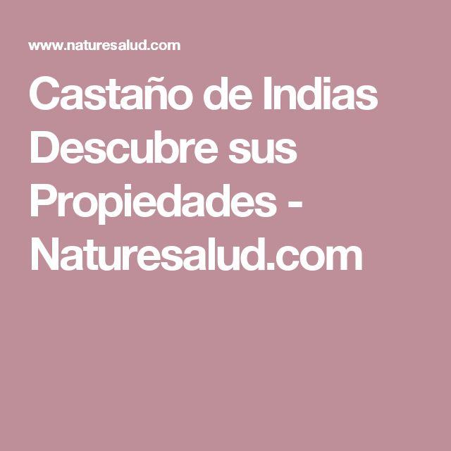 Castaño de Indias Descubre sus Propiedades - Naturesalud.com