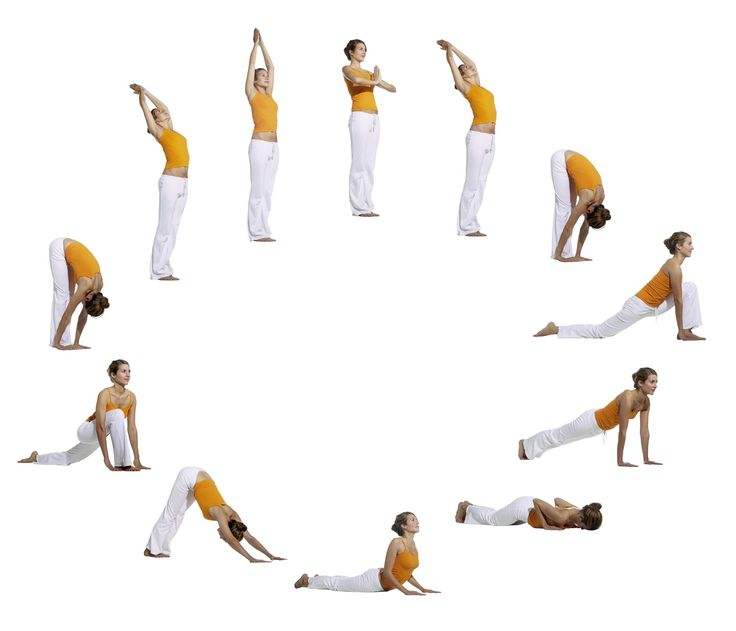 Der Yoga Sonnengruß ist die wichtigste Aufwärmübung im Yoga. Er wird in der Yoga Vidya Grundreihe typischerweise nach den Atemübungen (Pranayama) und vor den statisch gehaltenen Asanas geübt. Es ist auch möglich, den Sonnengruß unabhängig von den anderen Yogaübungen zu praktizieren. Der Yoga Sonnengruß besteht aus einem Ablauf von 12 Asanas, die zügig aufeinanderfolgen. Der Sonnengruß kann zügiger oder auch langsamer ausgeführt werden. www.yoga-vidya.de