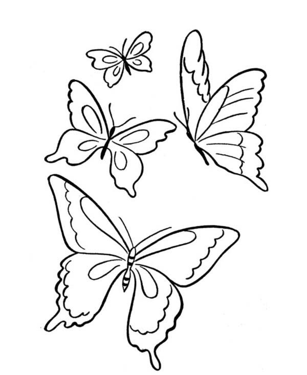Butterfly, : Four Butterflies Flying on the Park Coloring Page