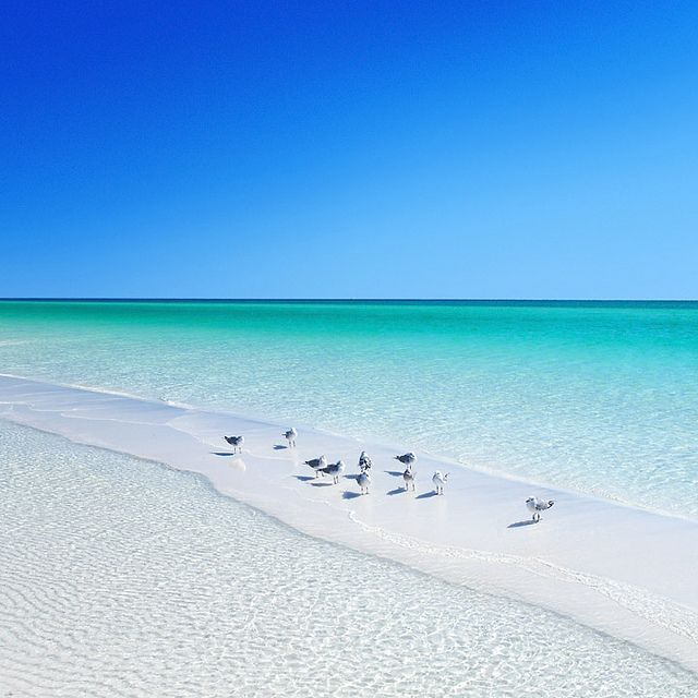 Florida Panhandle Beaches Known For Their Sugar White Sands And Crystal Clear Waters