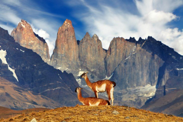 Top 5 Things to Do in Chile, the Land of Contrasts | Kaleidoskope #Chile #SouthAmerica http://kaleidoskopetravel.com/things-to-do-in-chile/