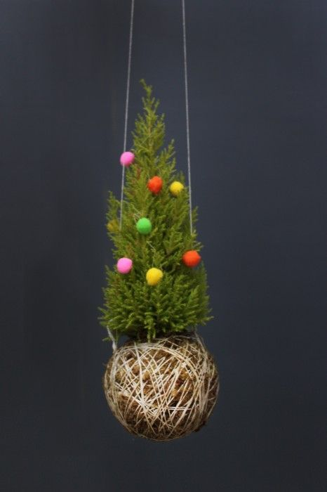 Mister-Moss Bauble ( the coolest thing ever)