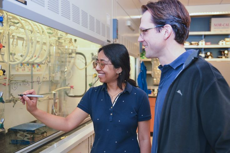 Stanford scientists have discovered a novel way to make plastic from carbon dioxide (CO2) and inedible plant material, such as agricultural waste and grasses. Researchers say the new technology could provide a low-carbon alternative to plastic bottles and other items currently made from petroleum.