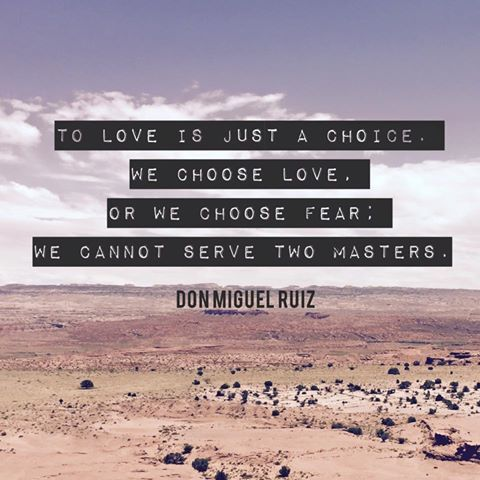 To love is just a choice. We choose love or we choose fear. We cannot serve two masters. -Don Miguel Ruiz