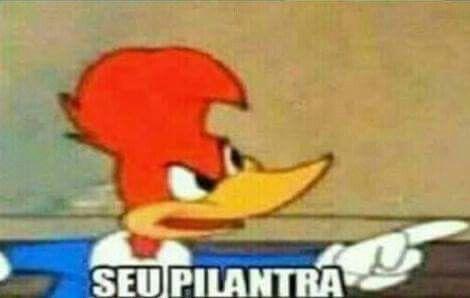 Memes Pica pau