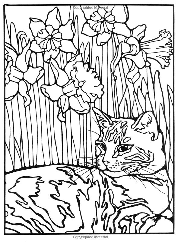 Comfortable Fashion Coloring Book Thick For Colored Girls Book Clean Creative Coloring Books Dia De Los Muertos Coloring Book Old Hello Kitty Coloring Books BlueMosaic Coloring Books 77 Best Coloring Pages Images On Pinterest   Coloring Books ..
