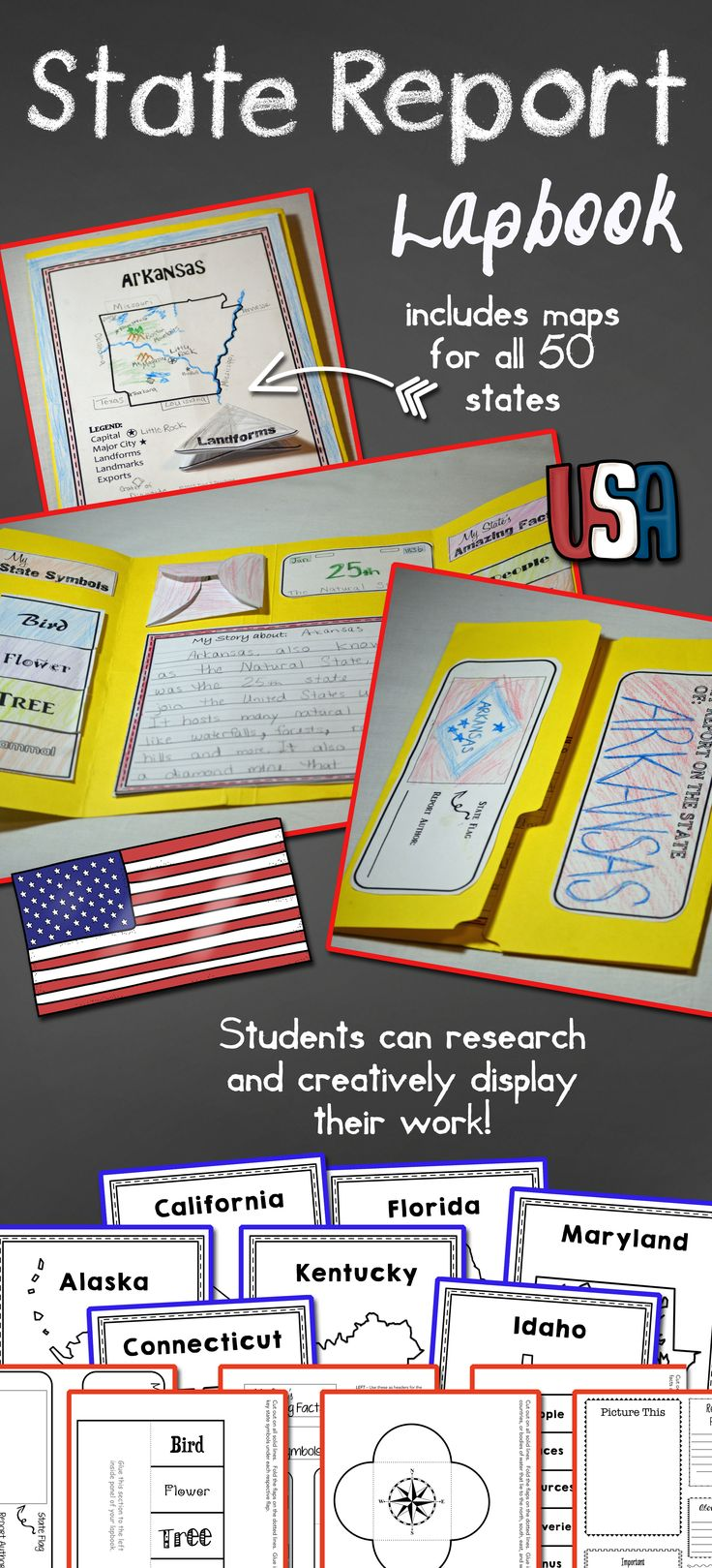 State Report Lapbook US States Research