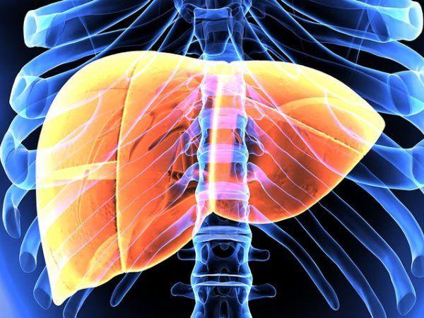 Καρκίνος ήπατος: Τα 8 βασικά συμπτώματα και οι παράγοντες κινδύνου |Giatros-in.gr