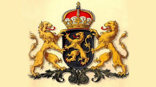 De Brabantse leeuw werd al in de 12e eeuw gebruikt en is eeuwenlang het wapen geweest van het hertogdom Brabant. Grofweg bestond dit uit het gebied dat tegenwoordig wordt gevormd door de provincie Noord-Brabant en de Belgische provincies Antwerpen en Vlaams-Brabant.