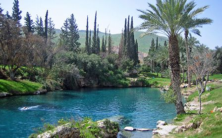 "*ISRAEL~Gan HaShlosha National Park,meaning""park of the three""in Hebrew,is a national park located bear Beit Shean.The park contains naturally warm water yr. round and draws visitors who enjoy swimming.The park also contains the Museum of Regional+ Mediterranean Archaeology,which houses a display of ancient Greek tools,artifacts that were uncovered in the Beit Shean Valley."