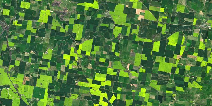 Agricultural crops, New South Wales, Australia - PlanetSAT satellite image