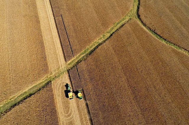 Russland drückt die Getreidepreise - Wirtschaft - tagesanzeiger.ch