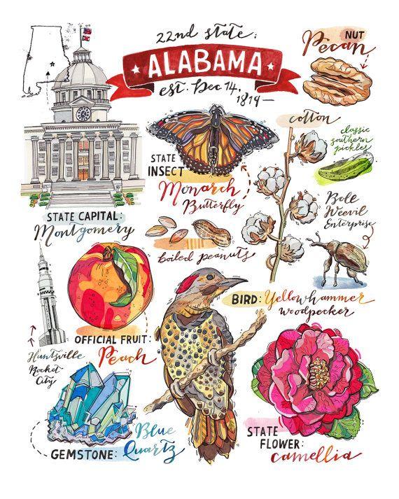 Alabama State Print. Illustration. Map. Southern by LouPaper