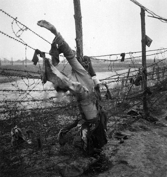 Best images about wwii and the holocaust on pinterest