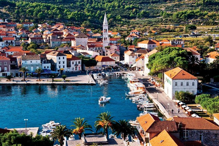 Jelsa Croatia / photo credit: croatiaweek.com