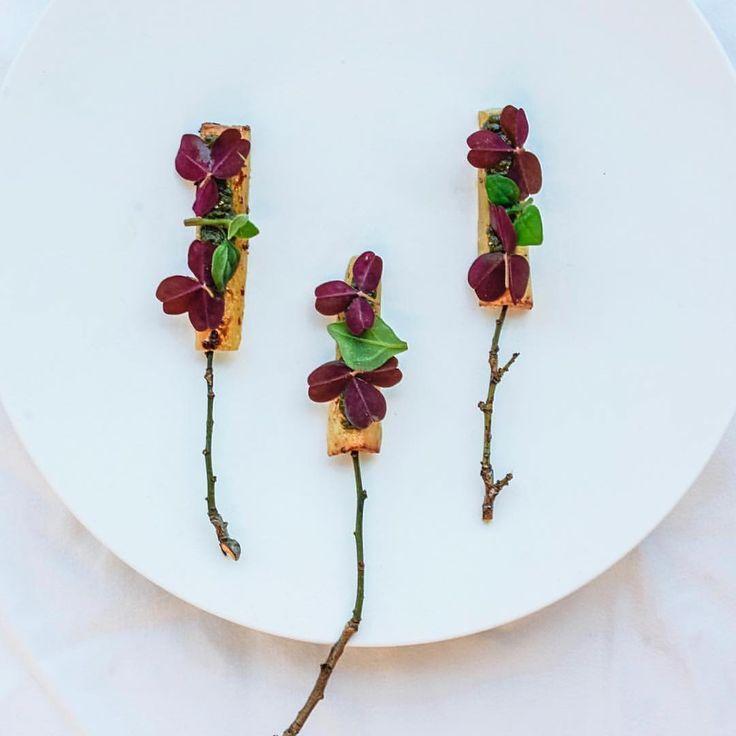 1000+ ideas about restaurant cuisine moléculaire on pinterest